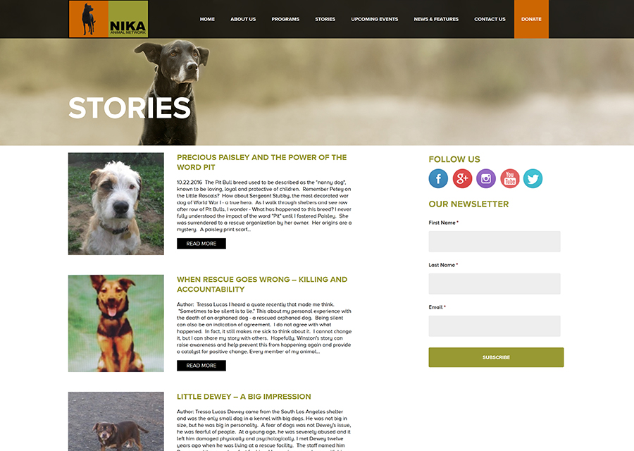NIKA Animal Network Website Design by Guido Media