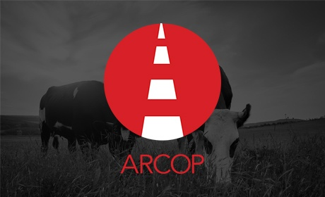 Arcop, Website Design Client, Guido Media